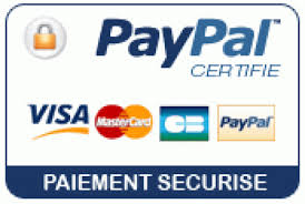 Paypal E-transaction